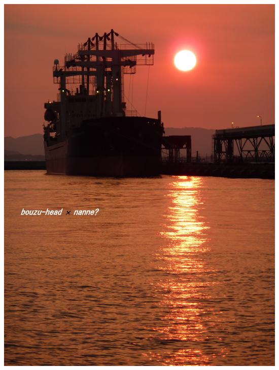 箱崎埠頭 09.jpg