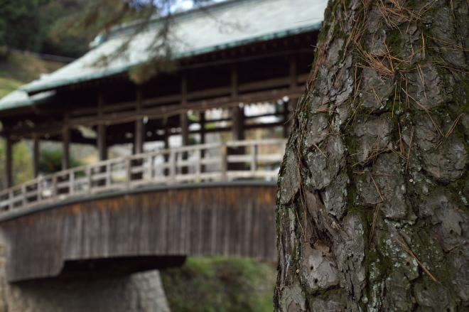 四国にレッツゴー 066.jpg