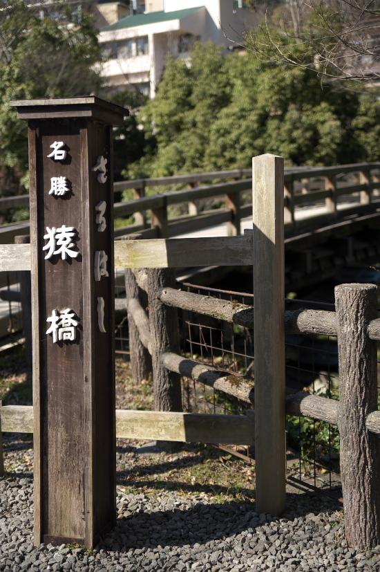 猿橋-01z.jpg