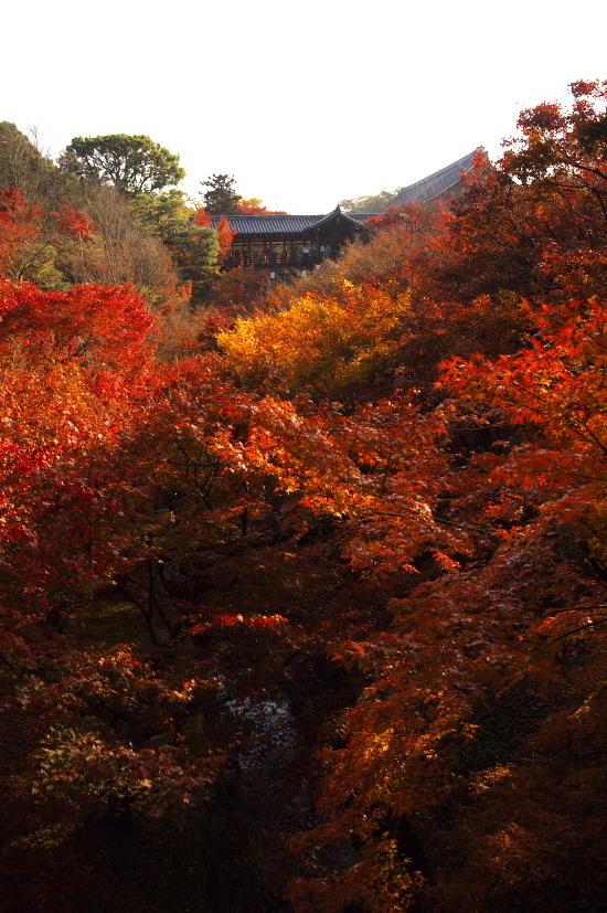 京都の紅葉 094.jpg
