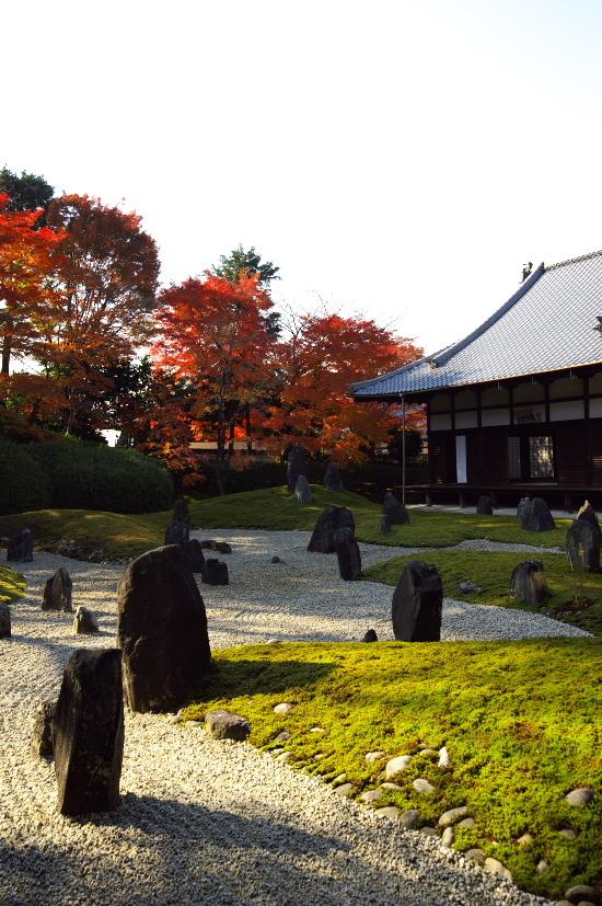 京都の紅葉 172.jpg