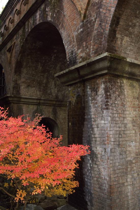 京都の紅葉 264.jpg