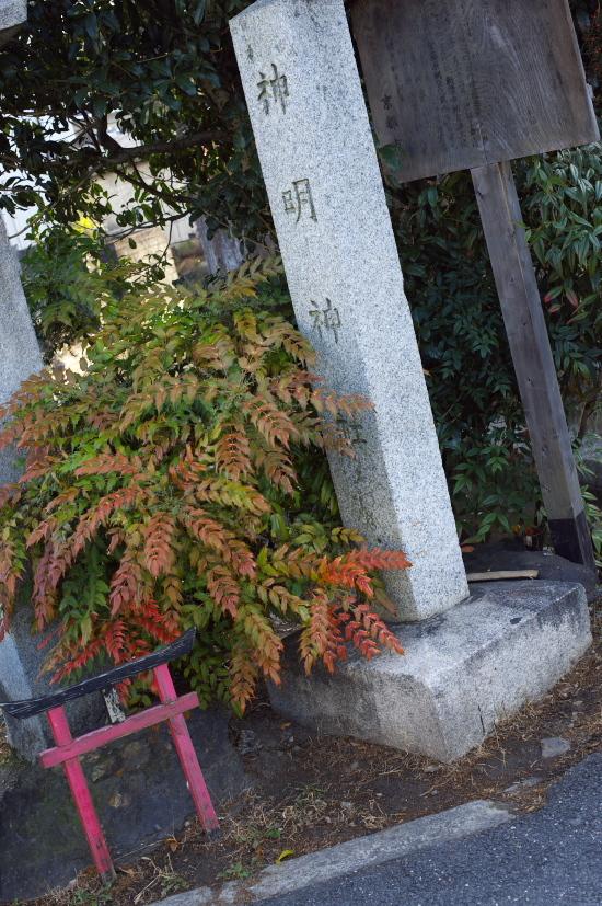大阪・京都巡り 223.jpg